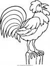 animali/uccelli/uccelli_023.JPG
