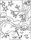 animali/uccelli/uccelli_037.JPG
