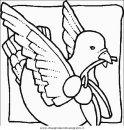 animali/uccelli/uccelli_047.JPG