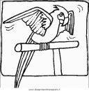 animali/uccelli/uccelli_056.JPG