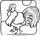 animali/uccelli/uccelli_063.JPG