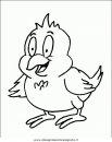 animali/uccelli/uccelli_105.JPG
