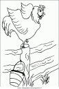 animali/uccelli/uccelli_184.JPG