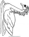 animali/uccelli/uccelli_245.JPG