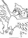 animali/uccelli/uccelli_251.JPG