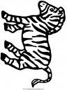animali/zebre/zebra004.JPG