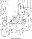 cartoni/peter_rabbit/peter_coniglio_rabbit_12.JPG