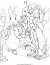 cartoni/peter_rabbit/peter_coniglio_rabbit_19.JPG