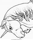 fantasia/unicorni/unicorno_13.JPG