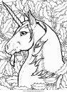 fantasia/unicorni/unicorno_23.JPG