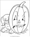 halloween/zucche/halloween_zucche_22.JPG