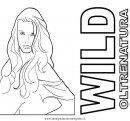 misti/richiesti10/wild.JPG