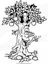 natura/alberi/piante_alberi_47.JPG