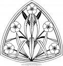 natura/alberi_speciali/oleandro_2.JPG