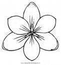 natura/fiori/crocus_2.JPG