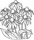 natura/fiori/fiore_fiori_236.JPG