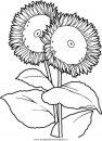natura/fiori/fiore_fiori_238.JPG