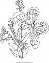 natura/fiori/fiore_fiori_242.JPG