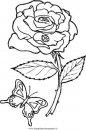 natura/fiori/fiore_fiori_243.JPG