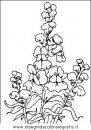 natura/fiori/fiori_fiore_026.JPG