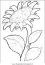 natura/fiori/fiori_fiore_064.JPG