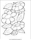 natura/fiori/fiori_fiore_072.JPG