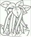 natura/fiori/fiori_fiore_083.JPG