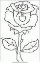 natura/fiori/fiori_fiore_094.JPG
