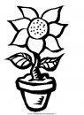 natura/fiori/fiori_fiore_103.JPG