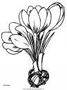 natura/fiori/fiori_fiore_112.JPG