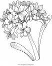 natura/fiori/ortensia_3.JPG