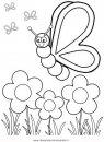 natura/primavera/primavera_61.JPG