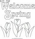 natura/primavera/primavera_63.JPG