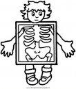 persone/corpo_umano/corpo_umano_20.JPG