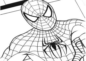 Disegni da colorare e da stampare per bambini for Stampe da colorare spiderman